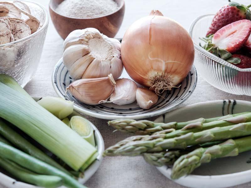 prebiotic foods for intestinal microbiota