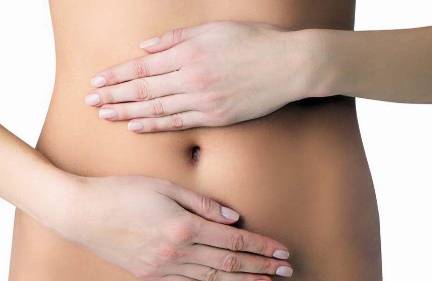microbiota intestinal y salud